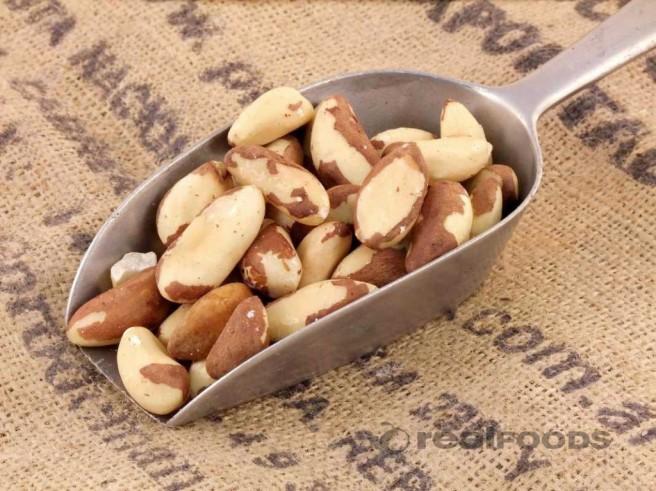 Brazil-nuts-1024x767
