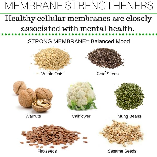 MEMBRANE-STRENGTHENERS
